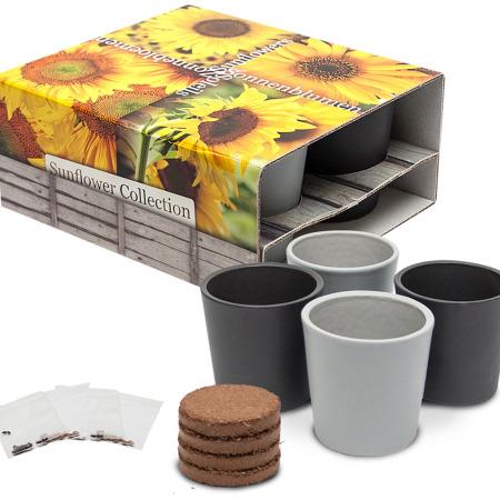 4351 - 4 Keramiktöpfe, Sonnenblumen